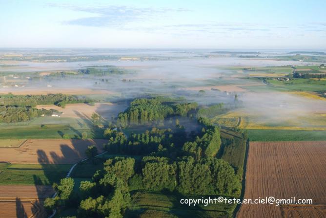 Brouillard matinal