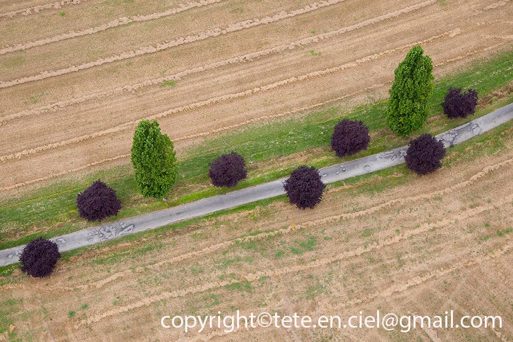 Guir'Land Art