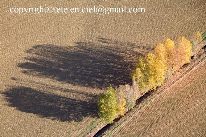Ombre d'automne